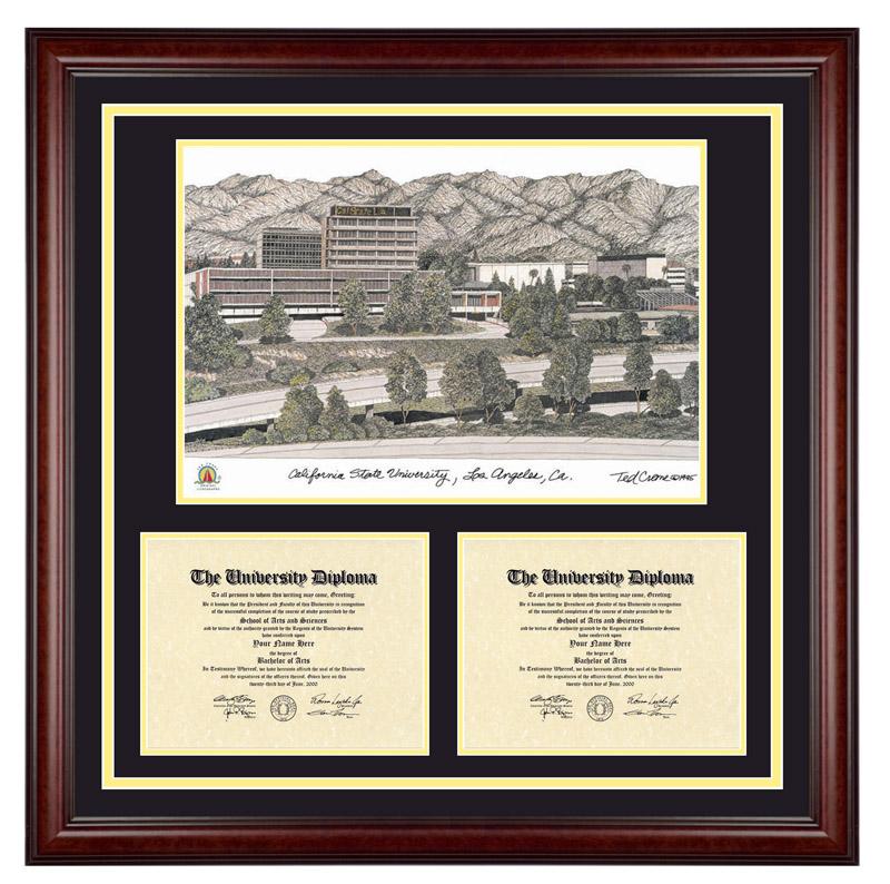 california state university - Michigan State Diploma Frame